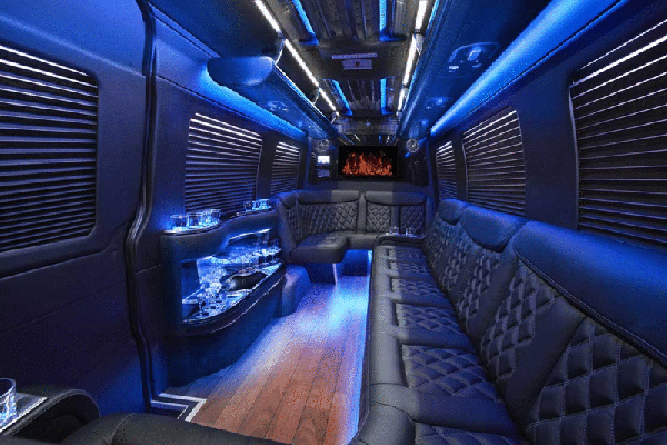 Sprinter Party Bus in Phoenix- interior